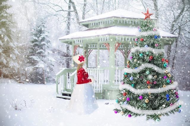 Christmas Background, Backdrop, Christmas Scene