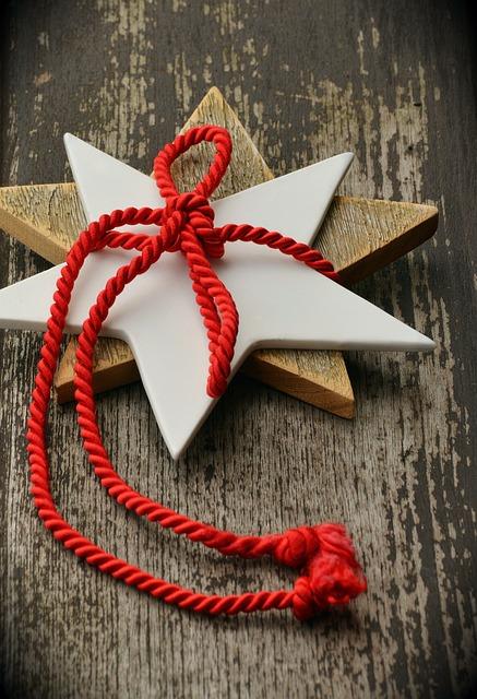 Poinsettia, Star, Christmas, Loop, Christmas Time