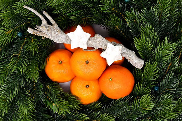Holly, Tangerines, Christmas, Deco, Christmas Time
