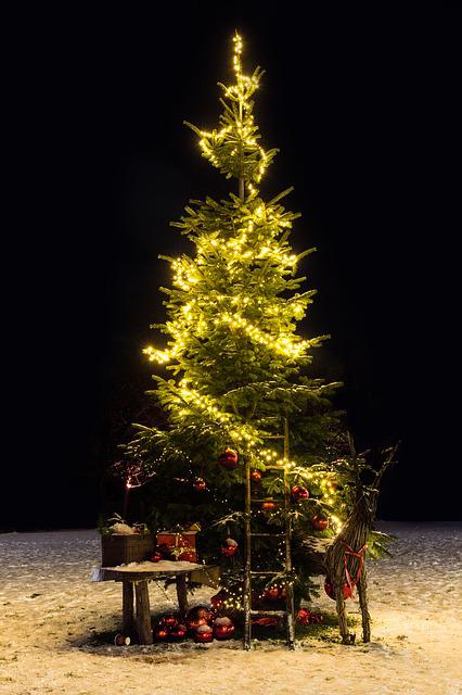 Christmas Tree, Christmas, Christmas Decoration