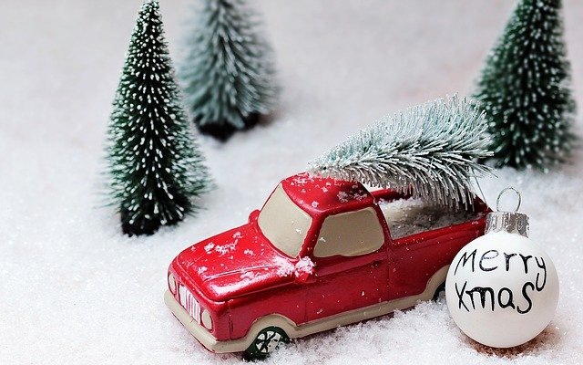 Fir Tree, Christmas, Christmas Tree, Christmas Motif