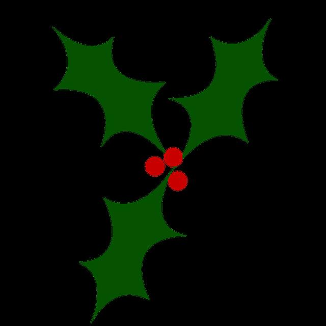 Holly, Christmas Tree, Berry, Christmas, Festivals