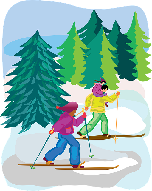 Tree, Nature, Sketch, Christmas, Cross-country, Skiing