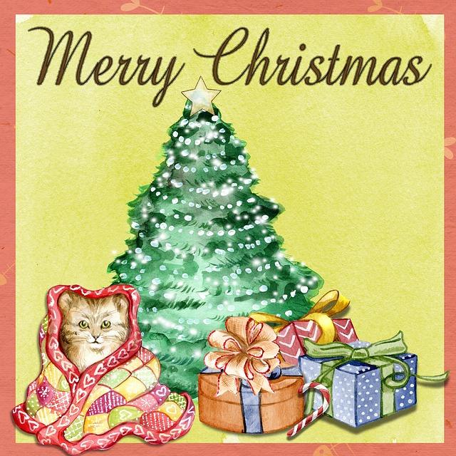 Christmas, Cat, Star, Christmas Tree, Tree, Holiday