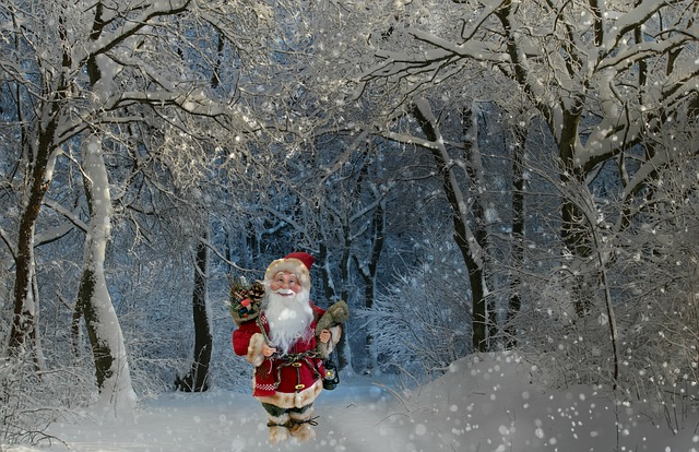Santa Claus, Nicholas, Christmas, Winter, Snow