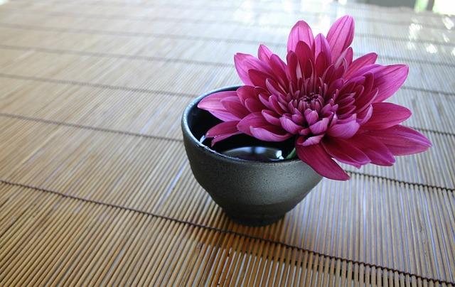 Chrysanthemum, The Bamboo Curtain, Japanese, Zen