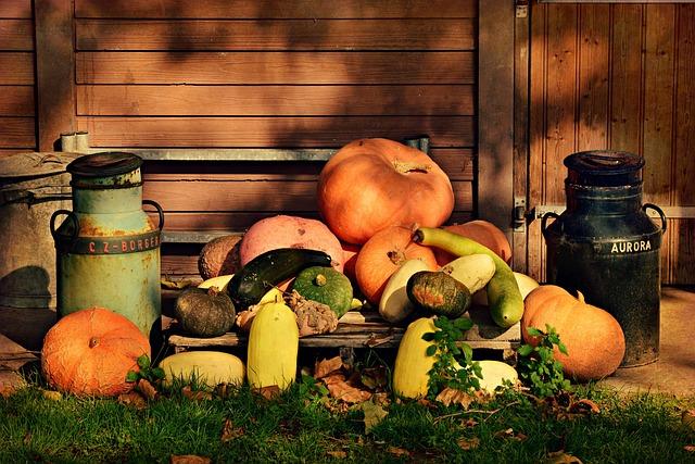 Pumpkin, Vegetable, Food, Folklore, Cinderella