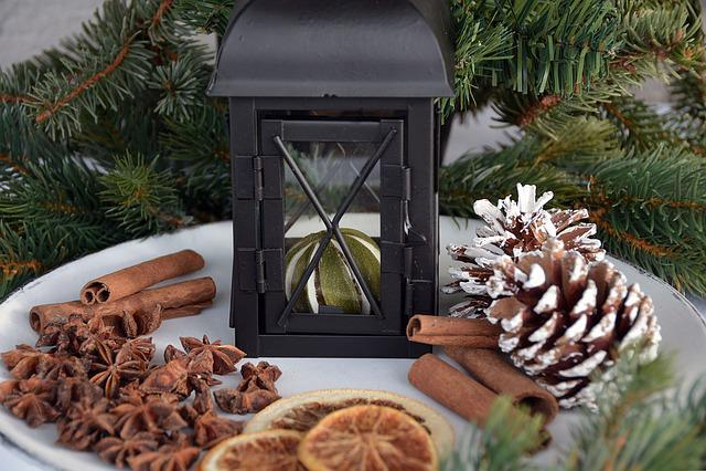Christmas, Cinnamon, Cinnamon Stick, Anise, Lantern