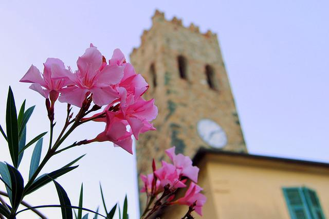 Flower, Torre, Watch, Medieval, Campanile, Cinque Terre