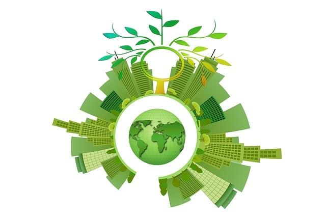 Sustainability, Energy, Tree, Aesthetic, Leaves, City