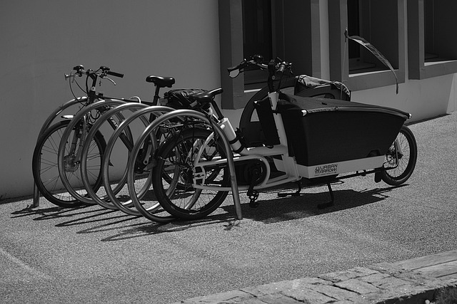 Bikes, Bicycles, Two Wheels, City, Parking, Transport