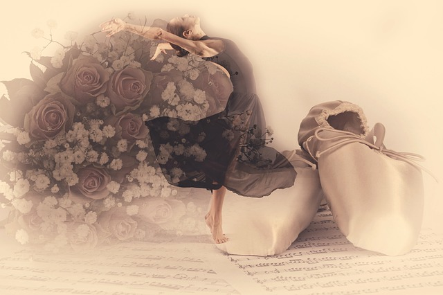 Ballet, Roses, Elegance, Classical, Shoes
