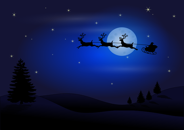 Santa, Claus, Christmas, Reindeer, Sledge, Flying