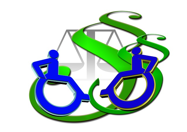 Barrier, Disability, Clause, Right, Wheelchair