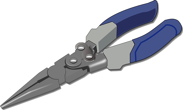 Pliers, Tools, Forceps, Tongs, Pincers, Nipper, Claw