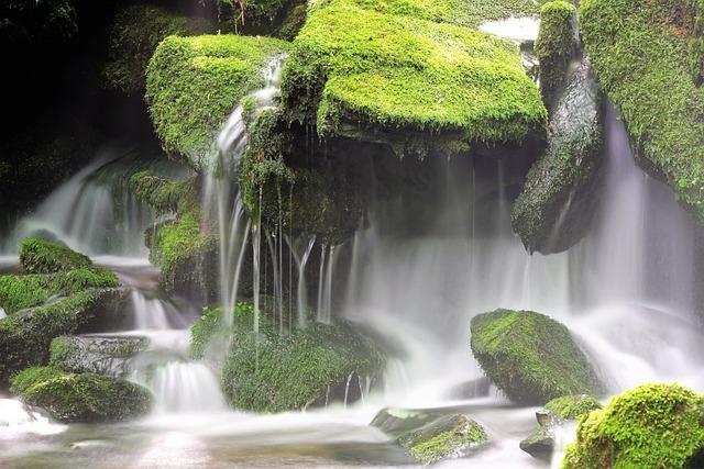 Moss, Brook, Water, Tree, Waterfall, Clean, Cool