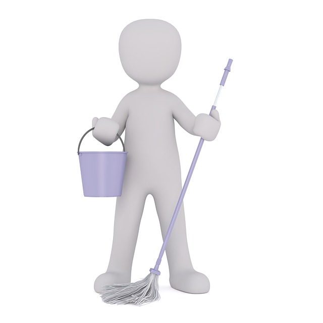 Cleaning Lady, Cleaner, Clean, Cleaning Power, Vacuum