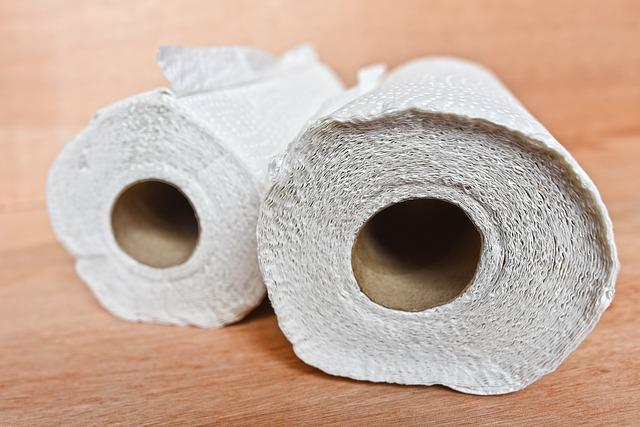 Kitchen Towel, Kitchen Paper, Roll, Cleaning, Sanitary