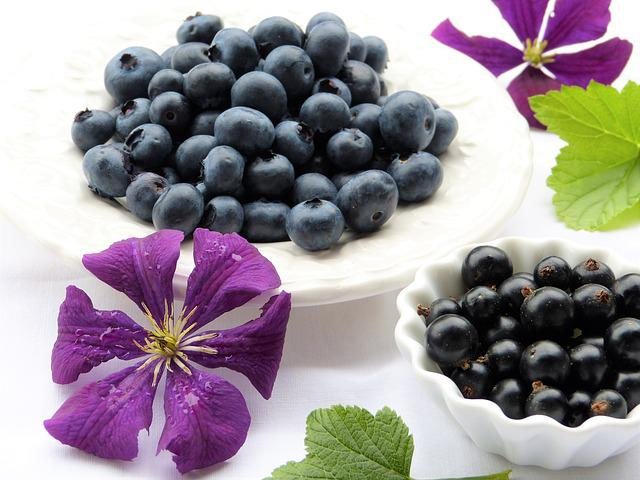 Blueberries, Black Currants, Clematis, Blossom, Bloom