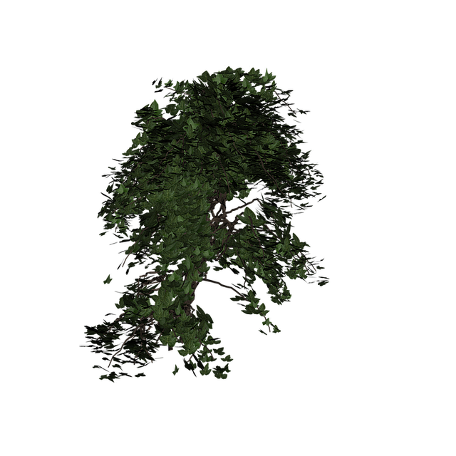 Ivy, Plant, Green, Climber Plant, Nature, Ivy Leaf