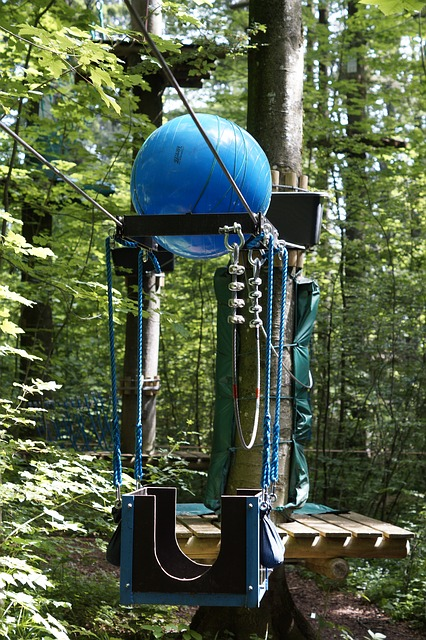 Climb, High Ropes Course, Climbing Forest