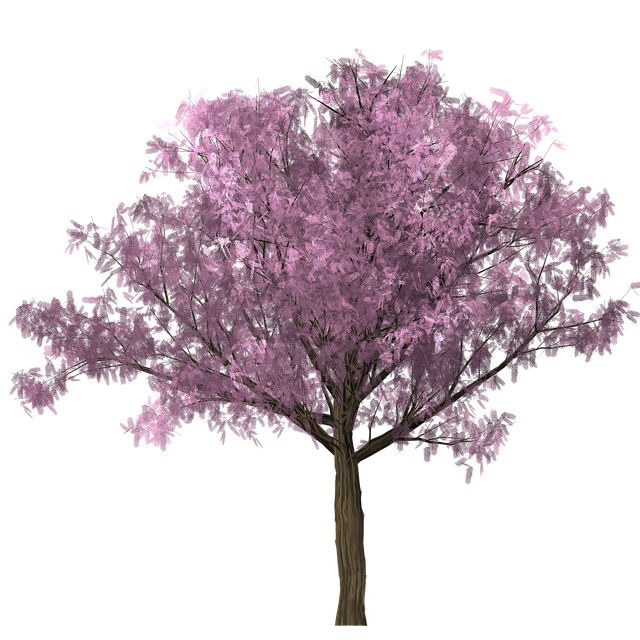 Tree, Design, Graphics, Clipping, Scrap, Photoshop