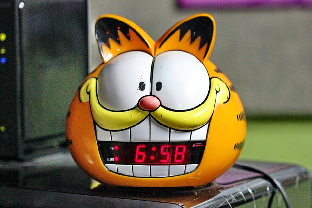Alarm, Clock, Cat, Time, Morning, Garfield, Annoying