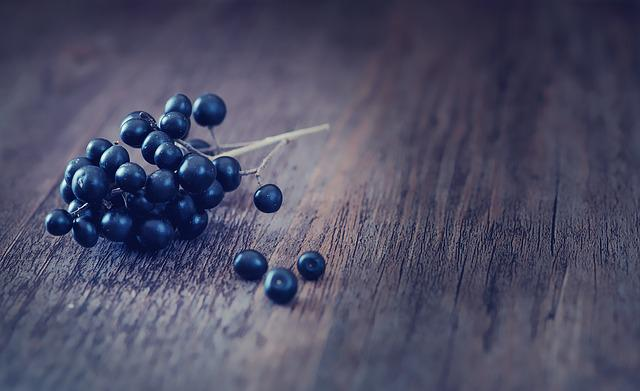Privet, Berries, Dark Blue, Privet-berries, Wood, Close