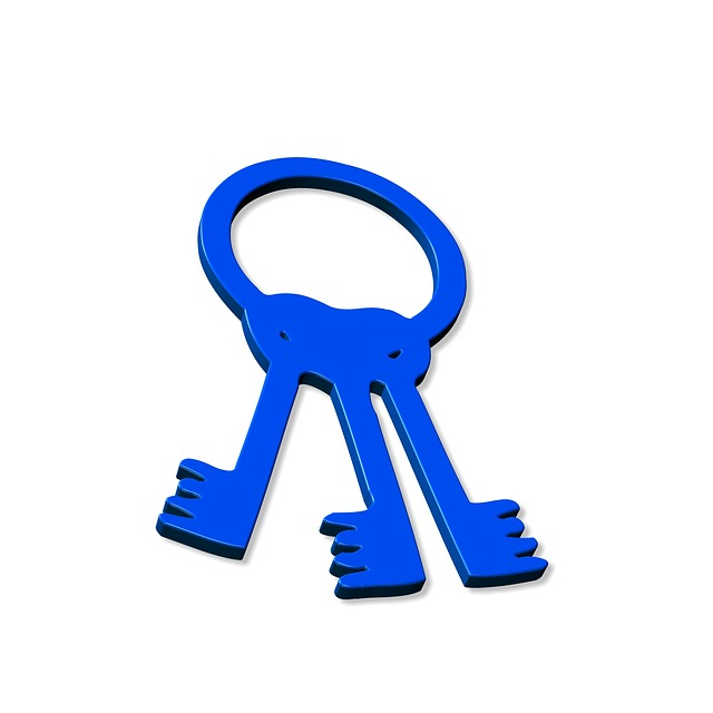 Keychain, Key, Close, Close To, Lock, Shut Off, Blue