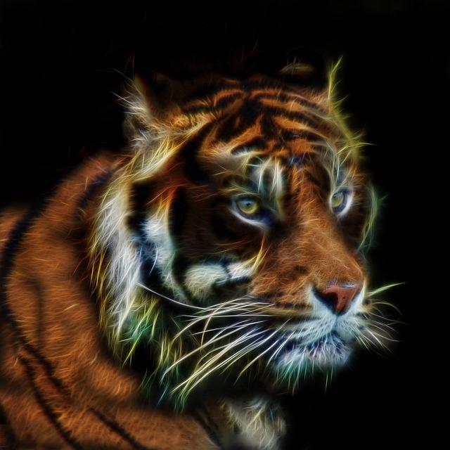 Tiger, Fractalius, Profile Picture, Fur, Close Up