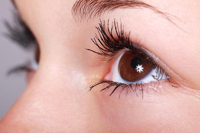 Beautiful, Close-up, Eye, Eyebrows, Eyelashes, Eyes