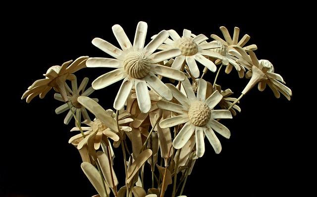 Nature, Flower, Plant, Closeup, Crafts