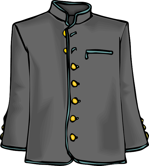 Coat, Jacket, Clothing, Uniform, Grey, Costume