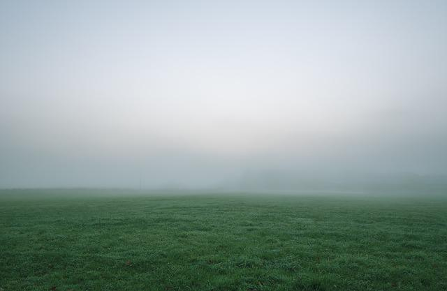 Grass, Field, Landscape, Fog, Sky, Mist, Cloud