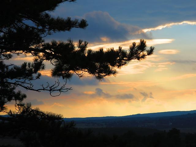 Sunset, Landscape, Cloud, Nature, Bakony, Pine