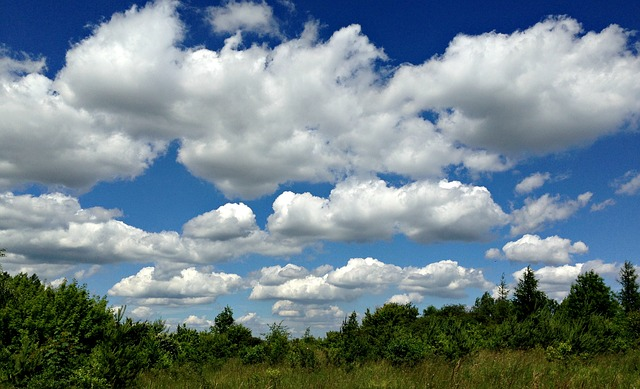 Olkusz, Poland, Meadow, Landscape, Clouds, Sky