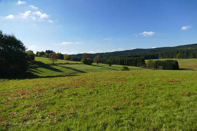 Landscape, Meadow, Nature, Autumn, Sky, Clouds, Trees