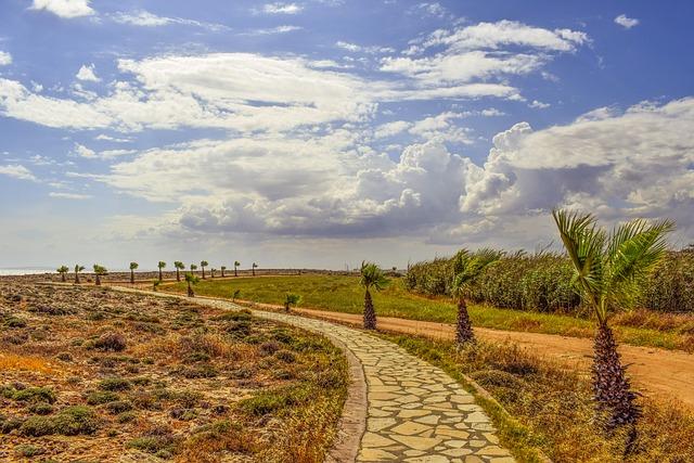 Coastal Path, Palm Trees, Sea, Sky, Clouds, Horizon