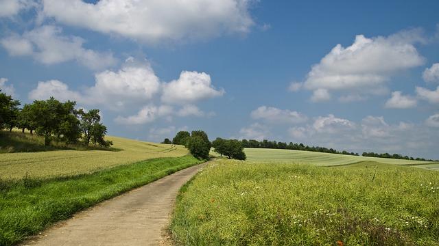 Field, Away, Summer, Sky, Clouds, Lane, Landscape