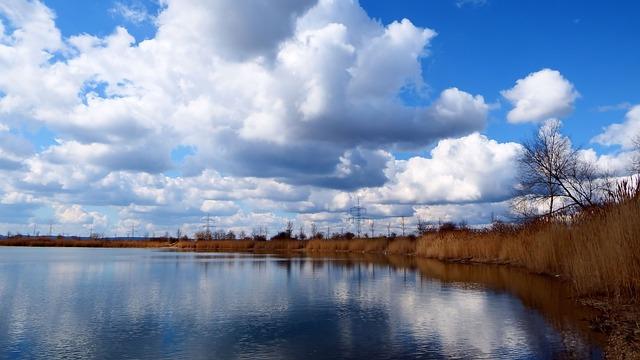 Clouds, Cumulus Clouds, Reed, Lake, Mirroring, Water