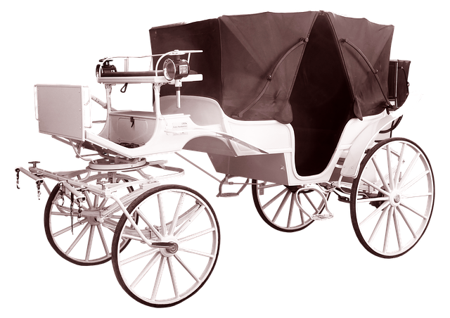 Coach, White, Wedding, Tours, Coachman, Carriage Rides