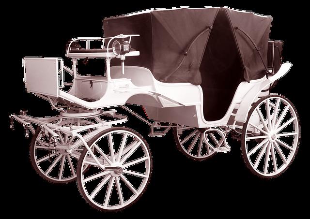 Coach, White, Wedding, Tours, Coachman, Carriage Rides
