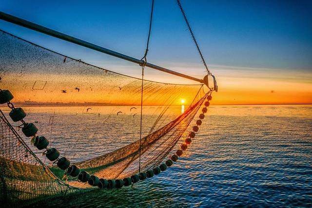 North Sea, Sunrise, Sky, Water, Lake, Nature, Coast