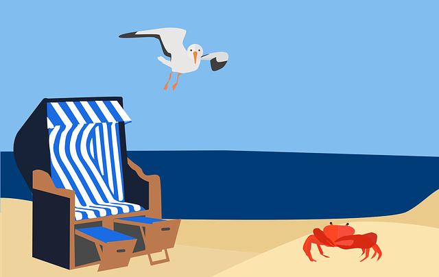 Beach, Coast, Sea, Maritime, Sand, Ocean, Lake, Seagull