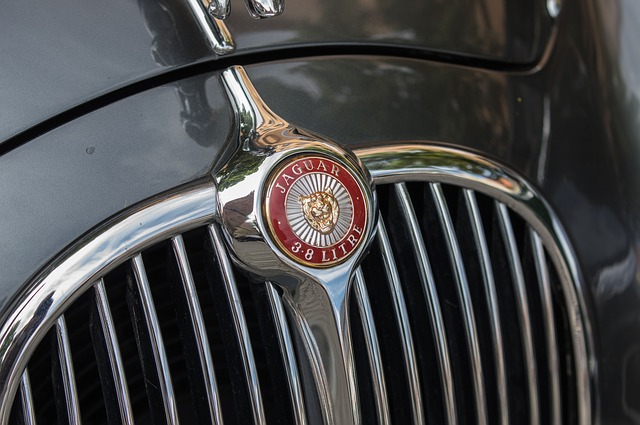 Auto, Jaguar, Vehicle, Grille, Logo, Coat Of Arms