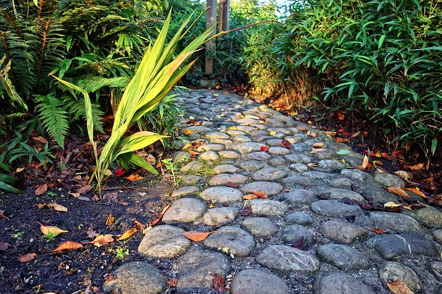 Footpath, Cobblestone, Cobble Path, Stone, Plants