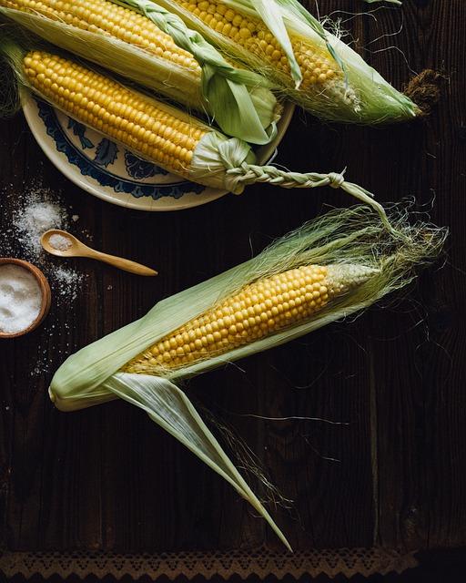 Corn, Cobs, The Ear, Food, Harvest, Farm