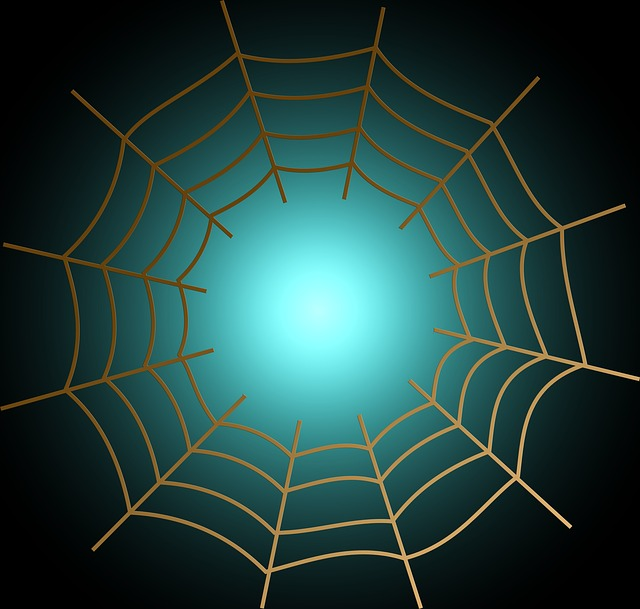 Web, Cobweb, Networking, Bill, Abstract, Background