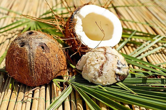 Coconut, Nut, Shell, Brown, Pulp, Exotic