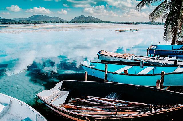 Boats, Coconut Trees, Pond